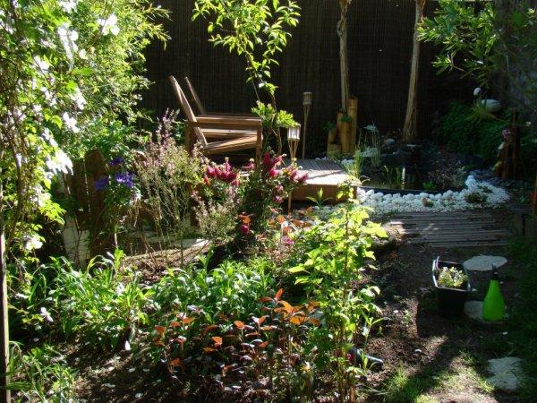 petit coin zen au fond de mon jardin j 39 adore y passer du temps oiseaux exotiques. Black Bedroom Furniture Sets. Home Design Ideas