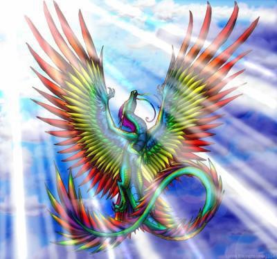 Dragon arc en ciel dans la posture du phoenix blog - Dragon arc en ciel ...